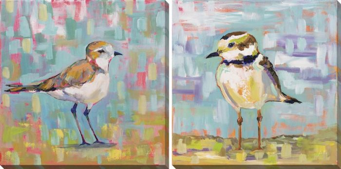 Coastal Plover Set of 2
