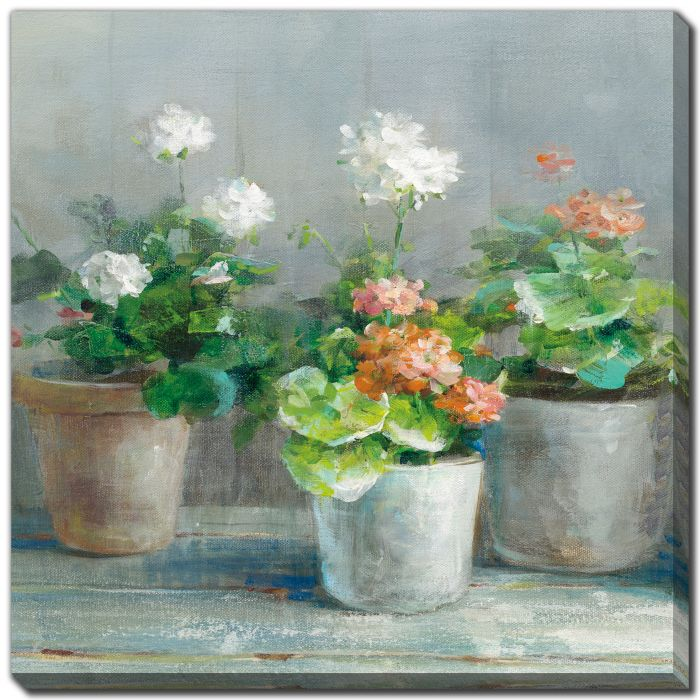 Farmhouse Geraniums II