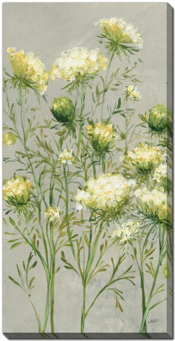 Queen Annes Lace II Yellow