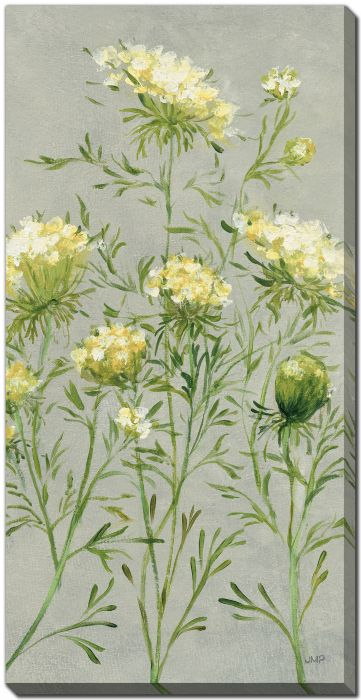Queen Annes Lace III Yellow